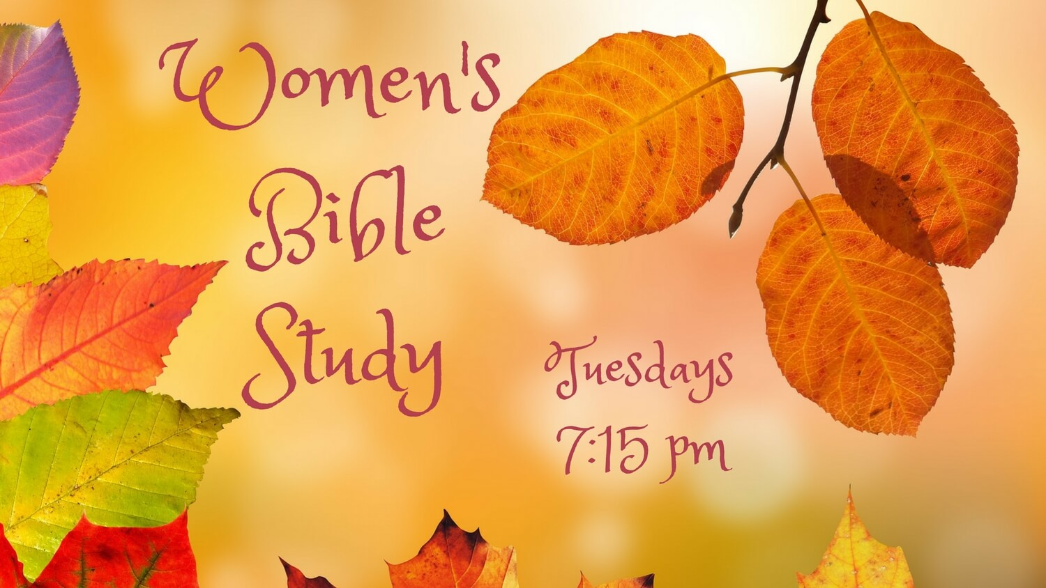 Womens-bible-study-north-kingstown-rhode-island